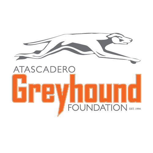 Greyhound Coupons & Promo Codes